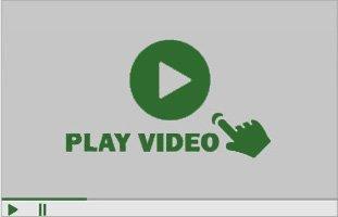 Top Notch Tree Service Video
