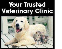 Veterinary Center - Mount Vernon, WA - Cedardale Neuter & Vaccination Clinic