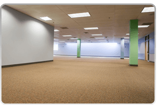 light colored carpeted wide room
