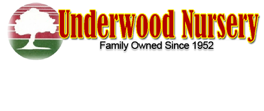 Underwood Nursery