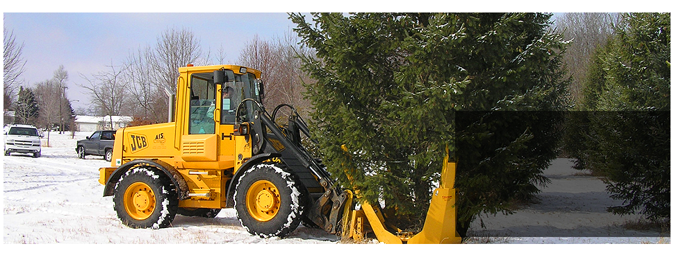 tree service | Adrian, MI | Underwood Nursery | 517-265-2481