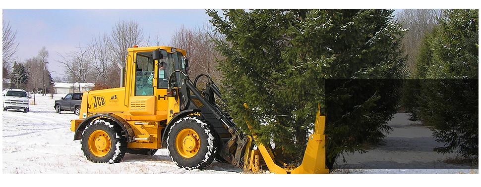 tree service | Adrian, MI | Underwood Nursery | 517-265-2481