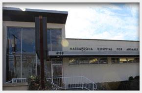 Veterinary Services | Massapequa, NY | Massapequa Hospital for Animals | 516-798-8700