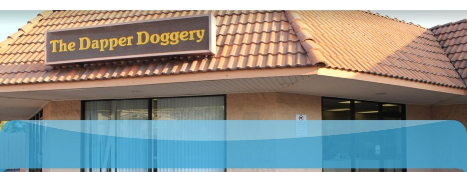 Self-service grooming | Poway, CA | Dapper Doggery | 858-748-7554