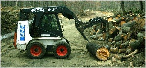 Timber Logging Saratoga Springs Ny Saratoga Land