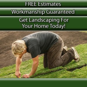 Lawn Care  - Denver, NC - Simply Better Landscaping