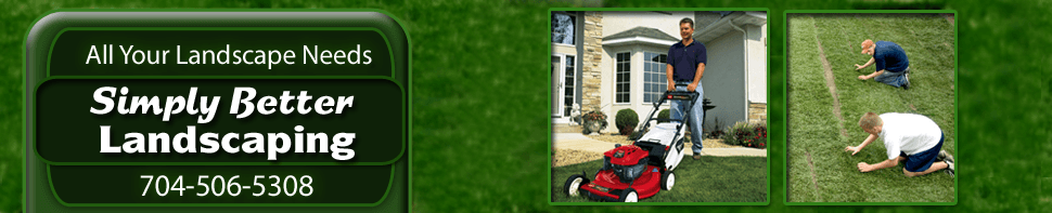 Landscaping - Denver, NC - Hardscaping and Tree Service