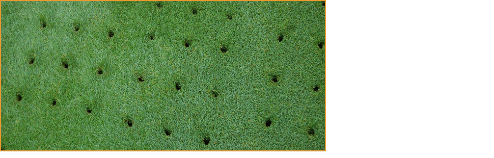 Aeration & Over Seeding | Knoxville, TN | Legends Lawn Care LLC | 865-247-4556