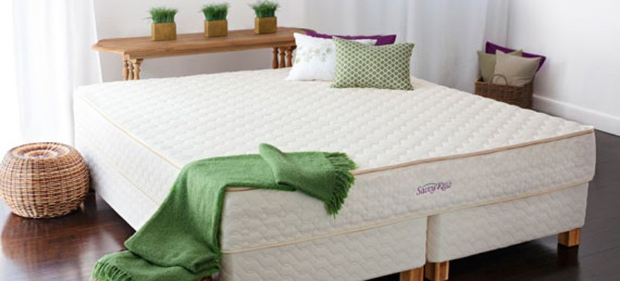 ORGANIC MATTRESSES Watertown, MA   Organic Furniture   Furnature