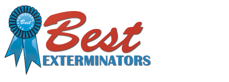 Best Exterminators