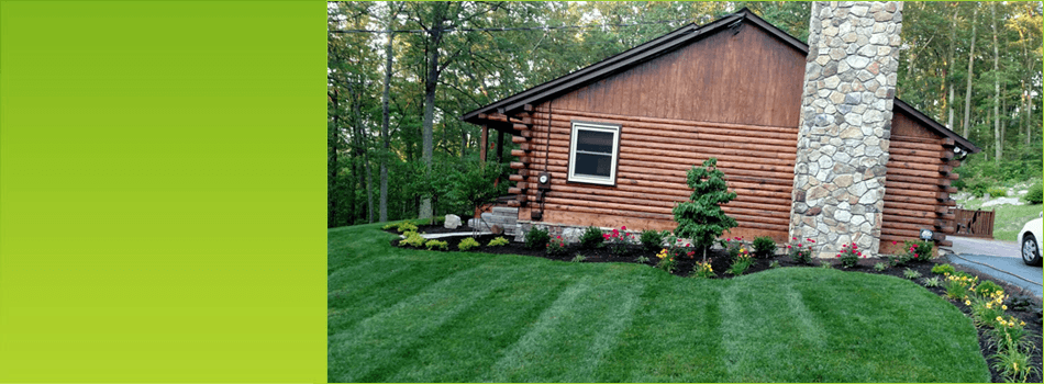 Lawn Care | Winchester, VA | A Cut Above LLC | 540-550-7206
