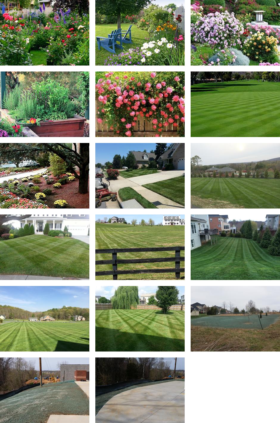 Lawn Care | Winchester, VA | A Cut Above LLC | 540-550-7206