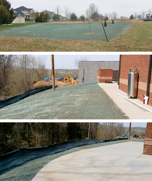 Seed and Sod | Winchester, VA | A Cut Above LLC | 540-550-7206