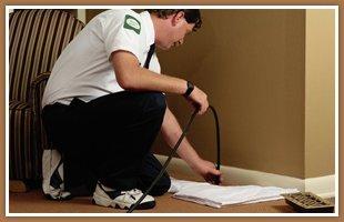 Termite treatment | Waukee, IA | JN Termite & Pest Control | 515-975-6457