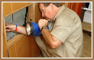 Termite exterminator   Waukee, IA   JN Termite & Pest Control   515-975-6457
