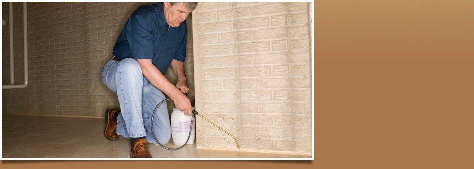 Cockroach exterminator | Waukee, IA | JN Termite & Pest Control | 515-975-6457