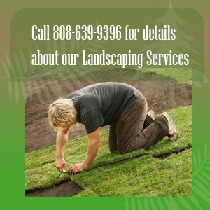 landscaping - Kauai, HI - Final Touch Yard Service - landscape service - Call 808-639-9396  for details about our Landscaping Services