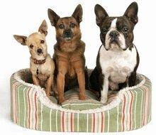 Pet Services - Rosalia, KS - Stony Creek Boarding Kennels