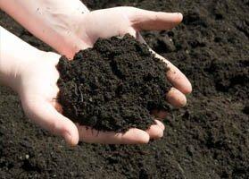 quality soils for gardens