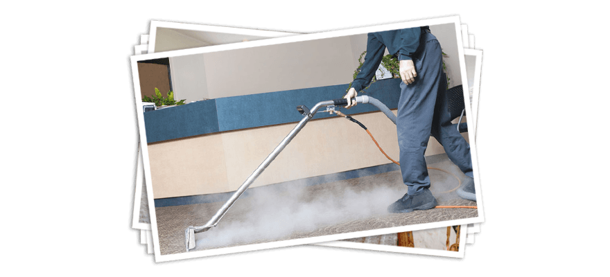 Ace Cleans Carpet Cleaners Lansing Mi