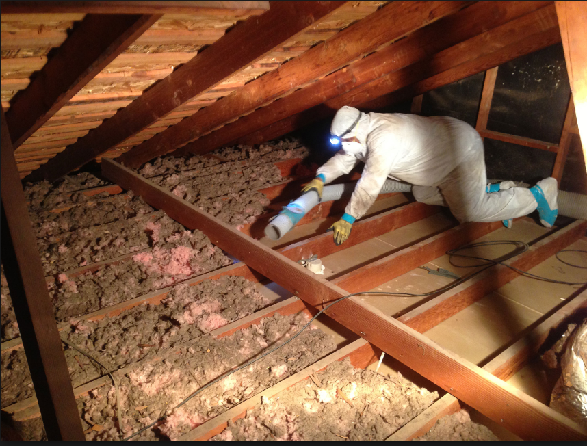 Insulation Removal Asbestos Lansing MI