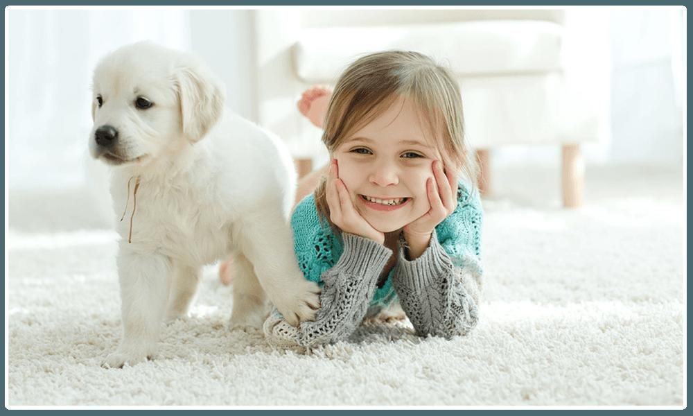 dog & child on carpet