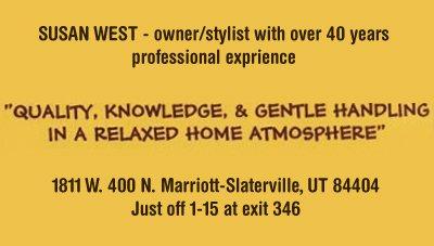 Pet Grooming - Marriott-Slaterville, UT - Must Love Dogs