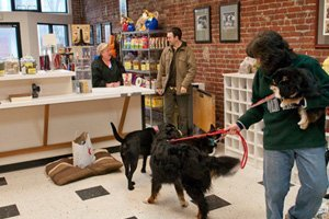 Photos | Portland, OR | It's A Dog's Life Playcare/Boarding | 503-286-2668