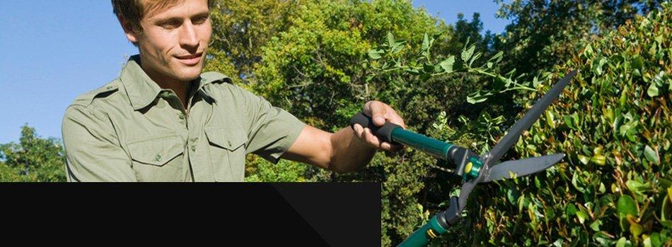 Personal Gardener Services | Palm Harbor, FL | James Peck Landscape Services Inc. | 727-710-5000