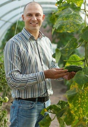 Wholesale Plant Nursery | Palm Harbor, FL | James Peck Landscape Services Inc. | 727-710-5000