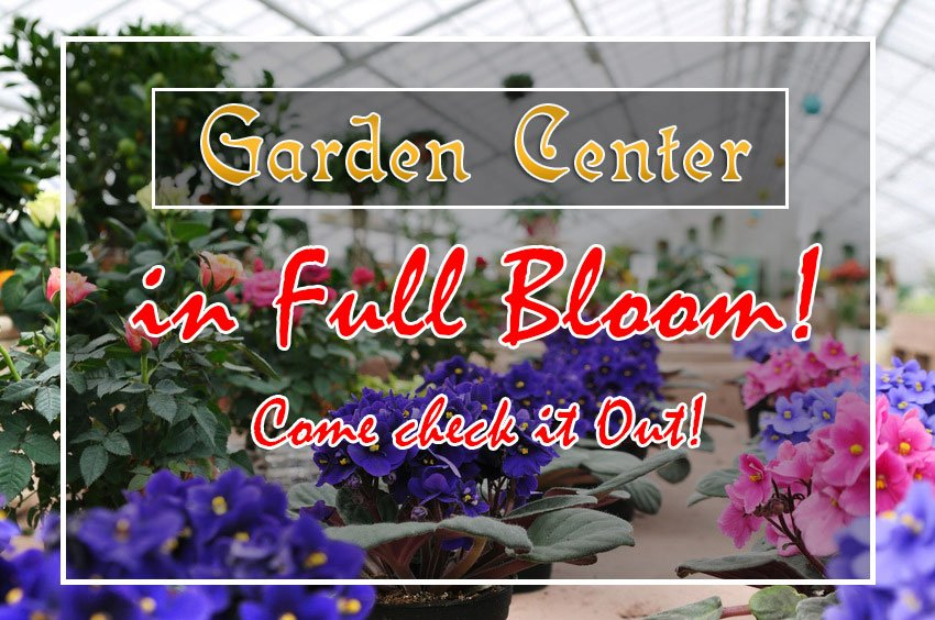 Garden Center In FULL BLOOM! Come Check It Out!