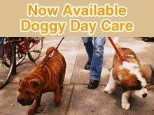 Pet Grooming Salon - Rome, GA - Dippity Do-Da-Dogs