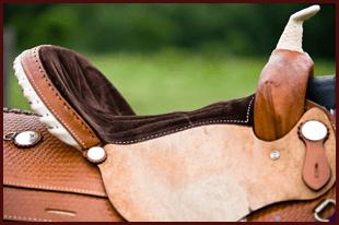Horse Care Equipment  - Saginaw, MI - Lone Star Western Store