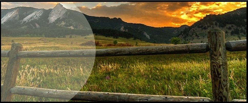 Business Moves | Denver, CO | Overland Trail Moving | 970-672-7901