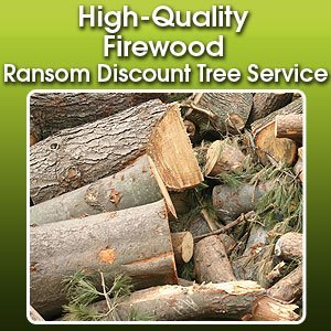 Firewood Sales  - Fort Wayne, IN - Ransom Discount Tree Service