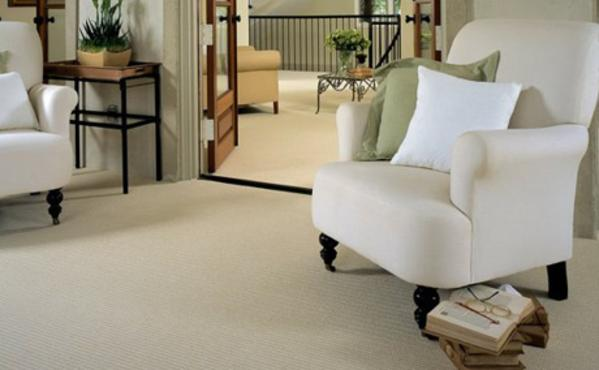 Carpet wall to wall camp hill pa for Wool carpet wall to wall