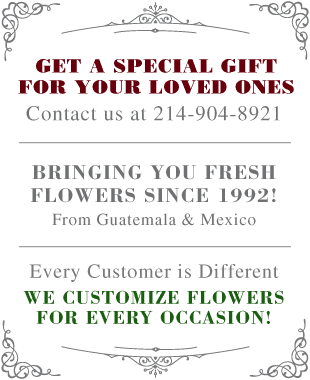 Juan Gaviota Flowers - Dallas, TX - Flower Shop