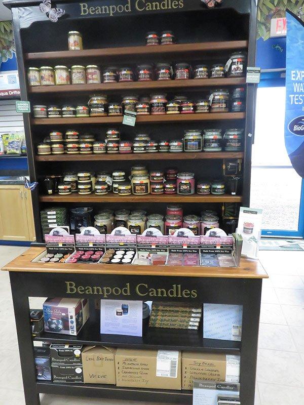 Beanpod Candle