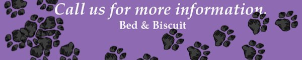 Pet Boarding - Columbia, MO - Bed & Biscuit