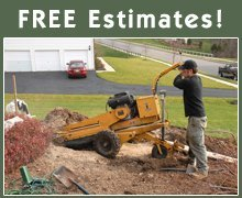 Tree Services - Effingham, IL - Willie & Walker's Tree Service