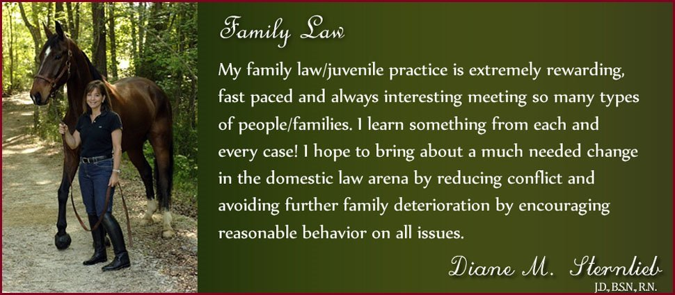 New Family Law Header Border