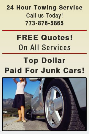 Roadside Services - Chicago,  IL - Action Junk Removal