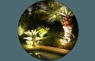 Beautiful light landscaping