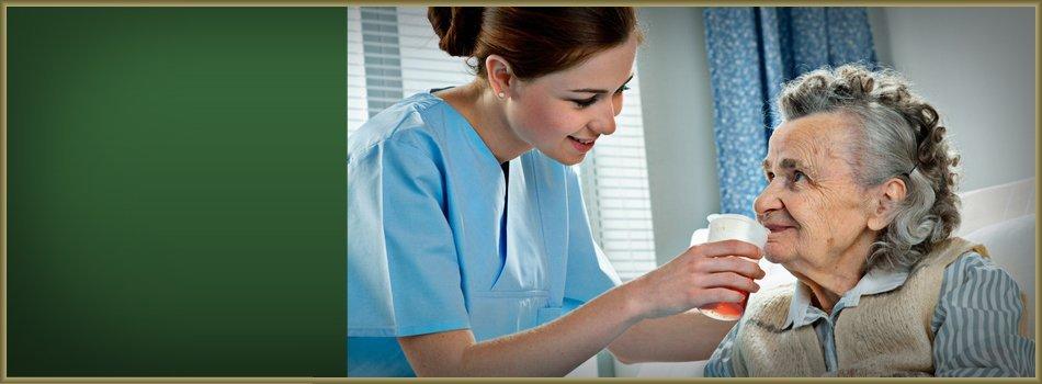 Enhancing Quality Of Life | Glen Ellyn, IL | Elder Bridge | 847-882-5201
