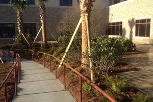 Walkways | Waycross, GA | Wright's Landscaping & Irrigation Inc | 9122836591