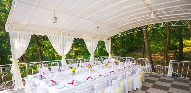 Party canopy