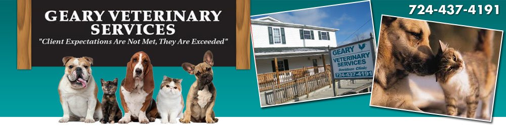 Veterinary Clinic - Lemont Furnace, PA - Geary Veterinary Services