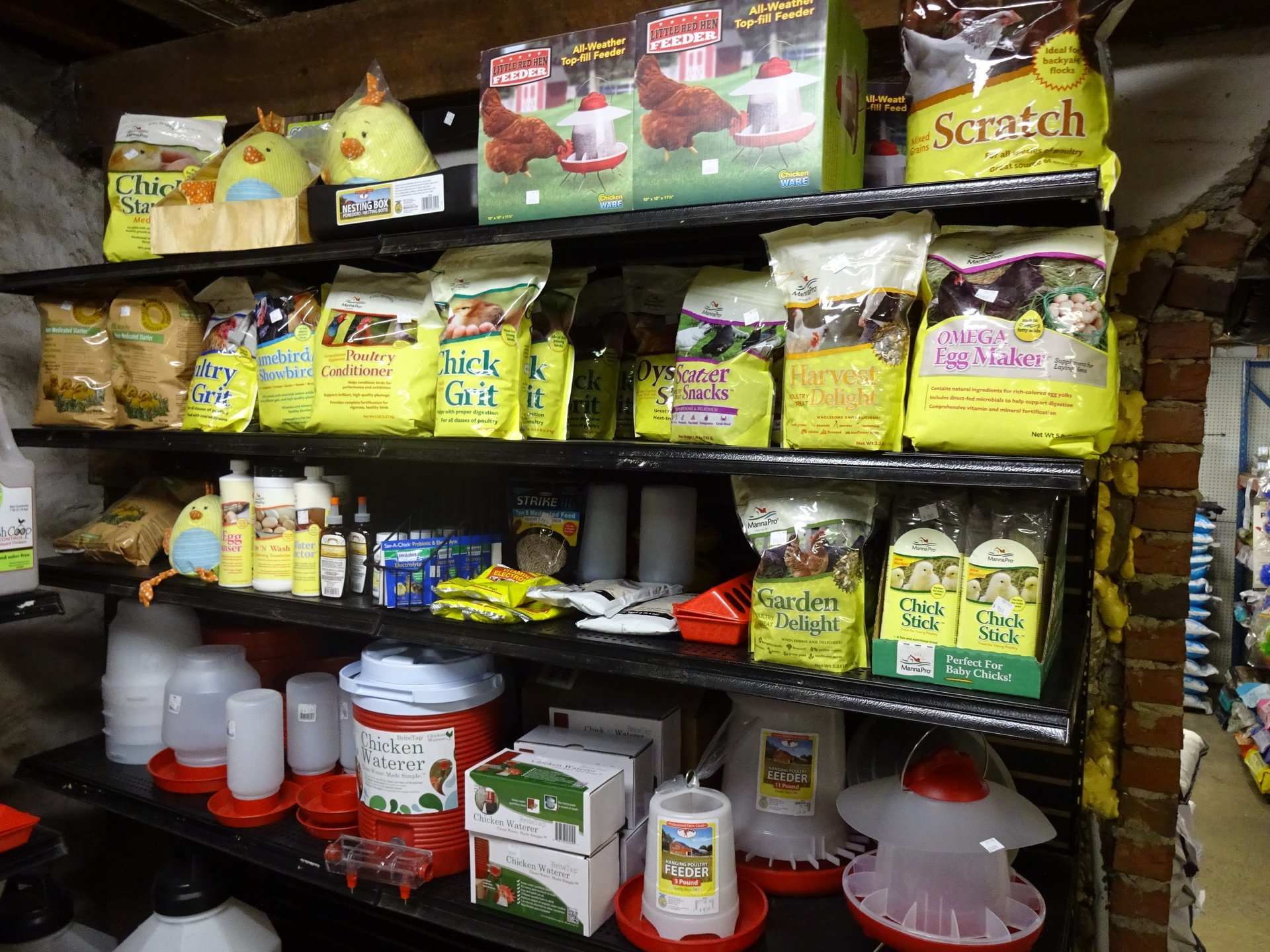 Bird feed, game bird feed, best bird feed store in Media
