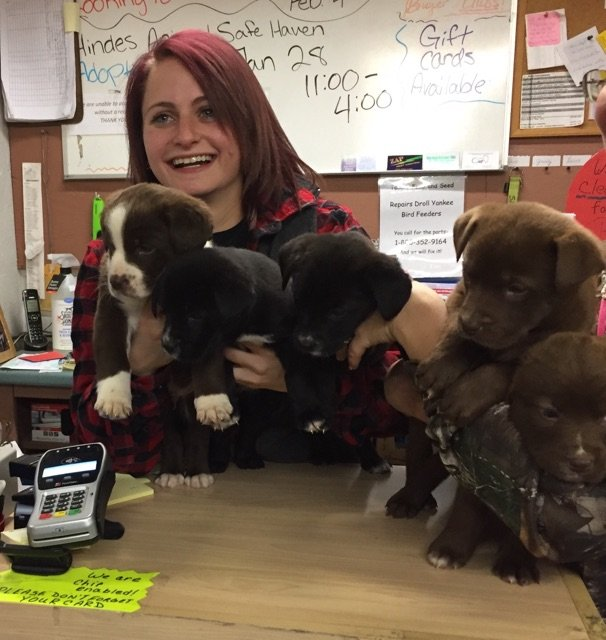Customer with Cute Puppies