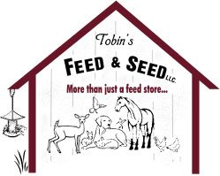 Best bird seed and feed, pet store for dogs, cats and other fury friends